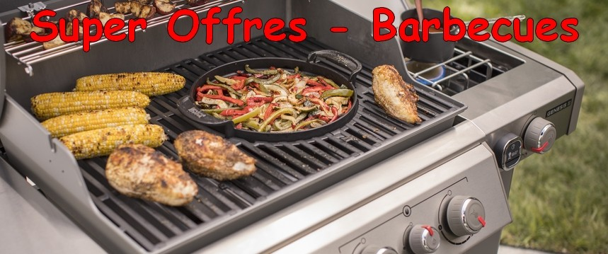 Super Offres barbecues